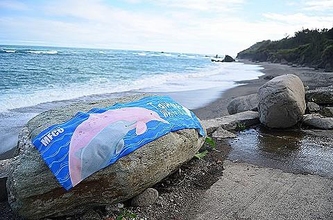 臺灣白海豚認養概念毛巾